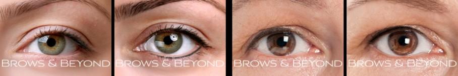 brows-beyond-eye-gallery-1