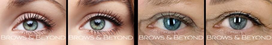 brows-beyond-eye-gallery-5